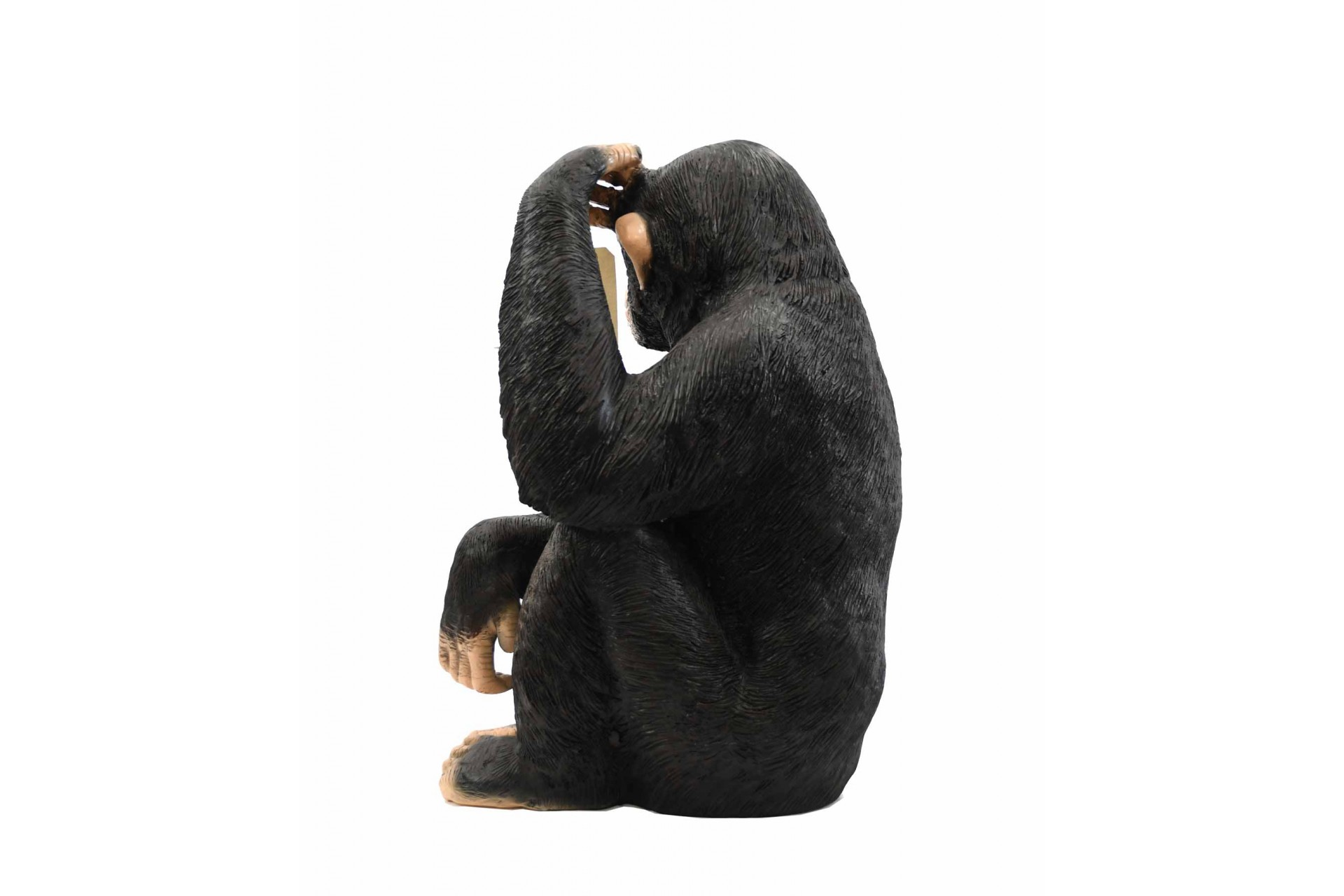 Large Chimp