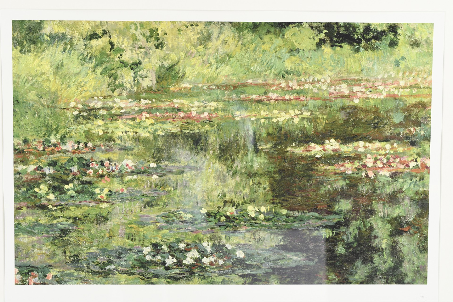 LIMITED EDITION MONET