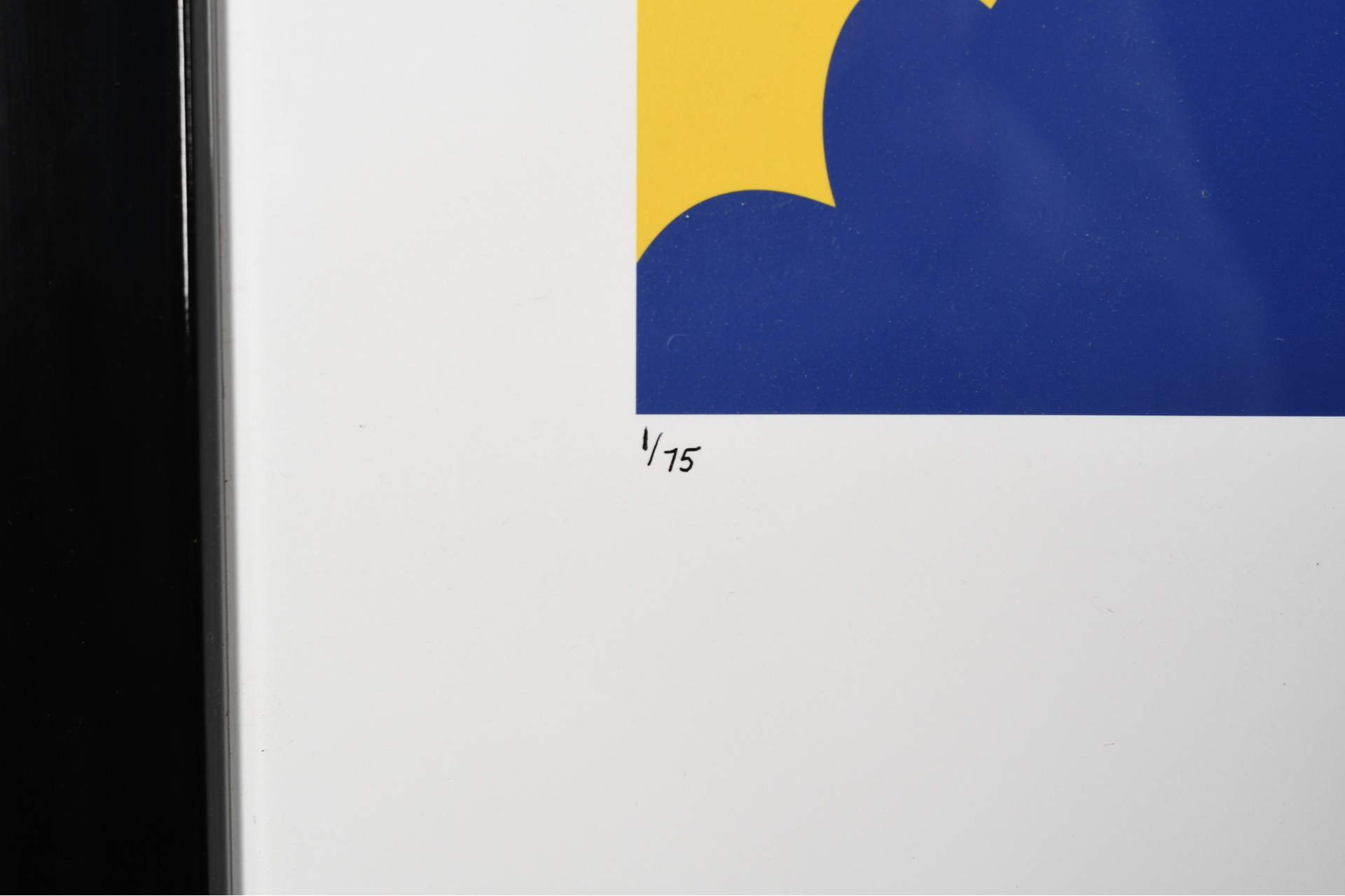 Stunning Limited Edition by Kevin Kelly No.1 in the Edition
